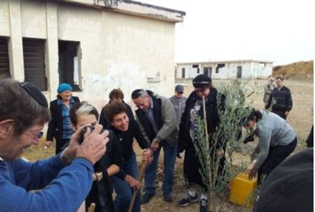 AFSI plants trees at Shdema