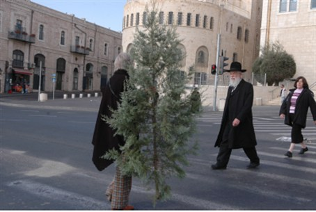 Christmas tree in Jerusalem